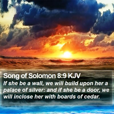 Song of Solomon 8:9 KJV Bible Verse Image