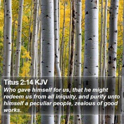 Titus 2:14 KJV Bible Verse Image