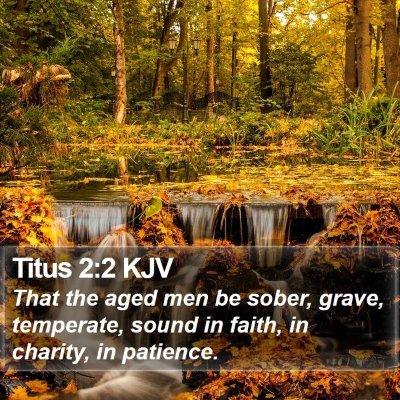 Titus 2:2 KJV Bible Verse Image