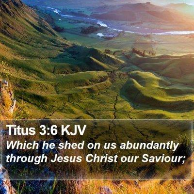 Titus 3:6 KJV Bible Verse Image