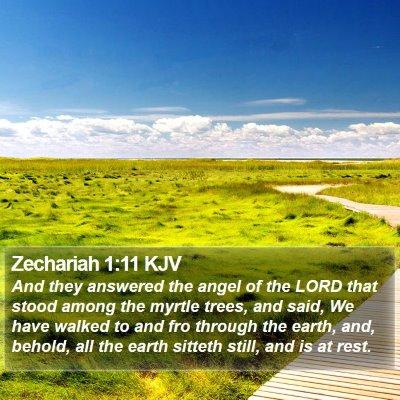 Zechariah 1:11 KJV Bible Verse Image