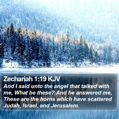 Zechariah 1:19 KJV Bible Verse Image