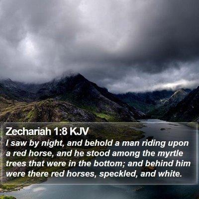 Zechariah 1:8 KJV Bible Verse Image