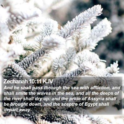 Zechariah 10:11 KJV Bible Verse Image