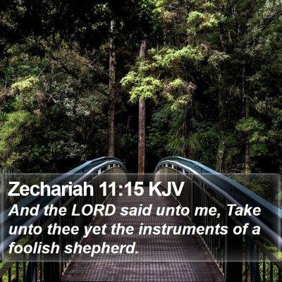 Zechariah 11:15 KJV Bible Verse Image