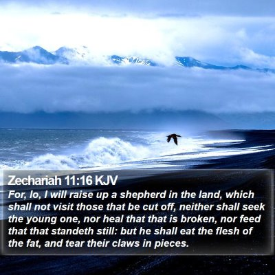 Zechariah 11:16 KJV Bible Verse Image