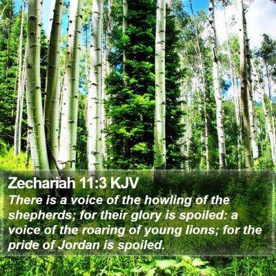 Zechariah 11:3 KJV Bible Verse Image