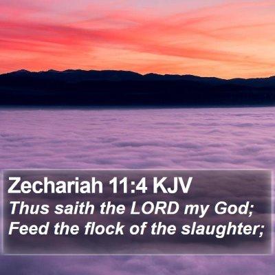 Zechariah 11:4 KJV Bible Verse Image