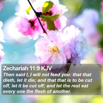 Zechariah 11:9 KJV Bible Verse Image