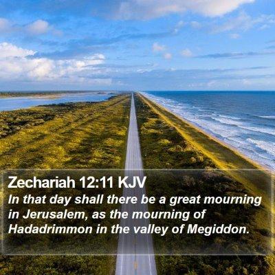 Zechariah 12:11 KJV Bible Verse Image