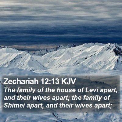 Zechariah 12:13 KJV Bible Verse Image