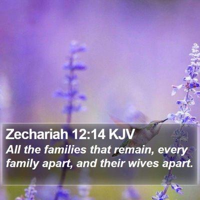Zechariah 12:14 KJV Bible Verse Image