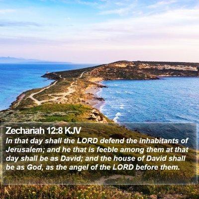Zechariah 12:8 KJV Bible Verse Image