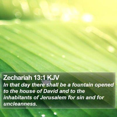 Zechariah 13:1 KJV Bible Verse Image