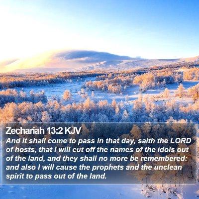 Zechariah 13:2 KJV Bible Verse Image