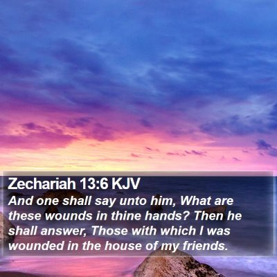 Zechariah 13:6 KJV Bible Verse Image