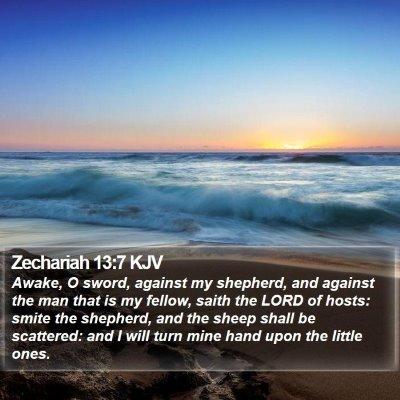 Zechariah 13:7 KJV Bible Verse Image