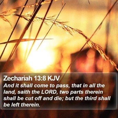 Zechariah 13:8 KJV Bible Verse Image