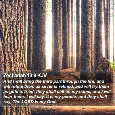 Zechariah 13:9 KJV Bible Verse Image