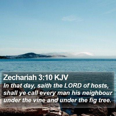 Zechariah 3:10 KJV Bible Verse Image