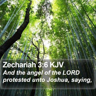 Zechariah 3:6 KJV Bible Verse Image