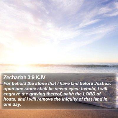 Zechariah 3:9 KJV Bible Verse Image