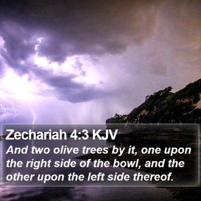 Zechariah 4:3 KJV Bible Verse Image