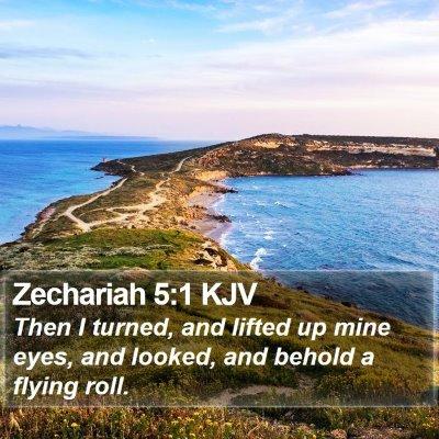 Zechariah 5:1 KJV Bible Verse Image