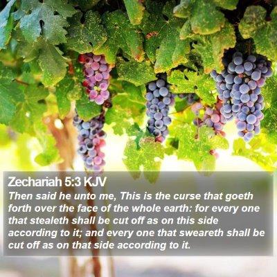 Zechariah 5:3 KJV Bible Verse Image