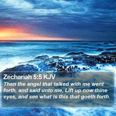 Zechariah 5:5 KJV Bible Verse Image