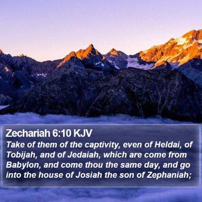 Zechariah 6:10 KJV Bible Verse Image
