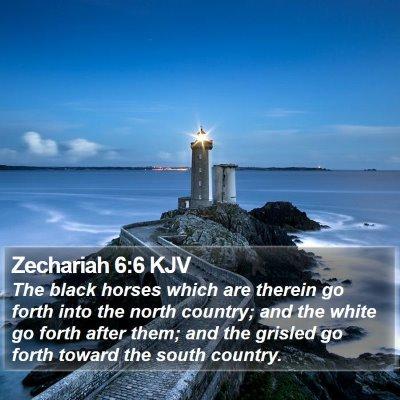 Zechariah 6:6 KJV Bible Verse Image