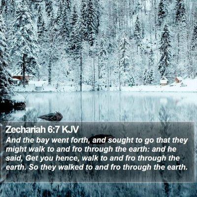 Zechariah 6:7 KJV Bible Verse Image