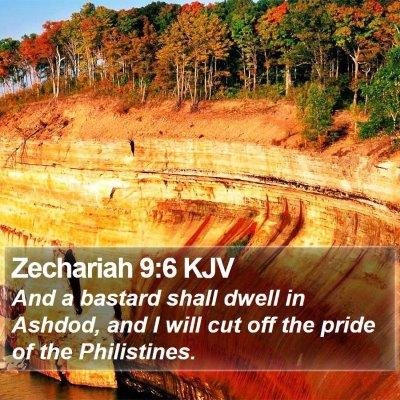 Zechariah 9:6 KJV Bible Verse Image