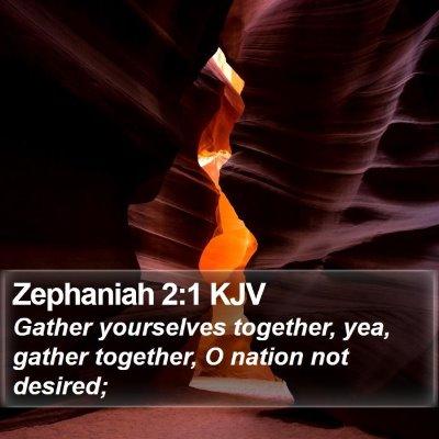 Zephaniah 2:1 KJV Bible Verse Image