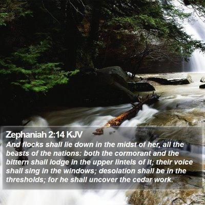 Zephaniah 2:14 KJV Bible Verse Image