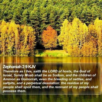 Zephaniah 2:9 KJV Bible Verse Image