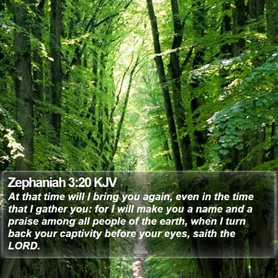 Zephaniah 3:20 KJV Bible Verse Image