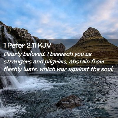 Picture 02 - 1 Peter 2:11 KJV - Dearly beloved, I beseech you as strangers and - Bible Verse Picture