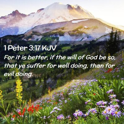 Picture 02 - 1 Peter 3:17 KJV - For it is better, if the will of God be so, that - Bible Verse Picture