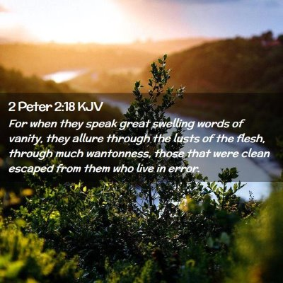 Picture 02 - 2 Peter 2:18 KJV - For when they speak great swelling words of - Bible Verse Picture
