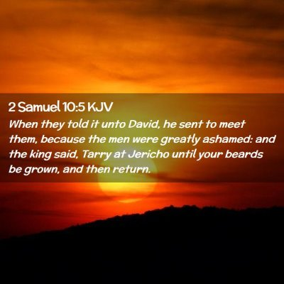 Picture 02 - 2 Samuel 10:5 KJV - When they told it unto David, he sent to meet - Bible Verse Picture