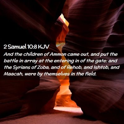 Picture 02 - 2 Samuel 10:8 KJV - And the children of Ammon came out, and put the - Bible Verse Picture