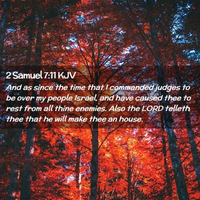 Picture 02 - 2 Samuel 7:11 KJV - And as since the time that I commanded judges to - Bible Verse Picture