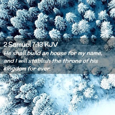 Picture 02 - 2 Samuel 7:13 KJV - He shall build an house for my name, and I will - Bible Verse Picture