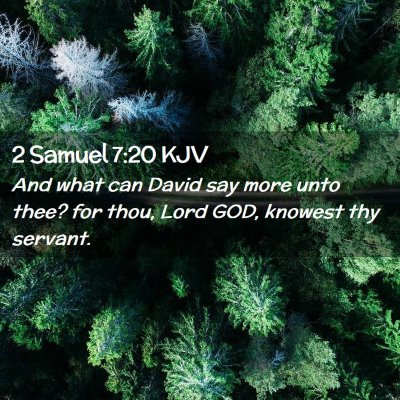 Picture 02 - 2 Samuel 7:20 KJV - And what can David say more unto thee? for thou, - Bible Verse Picture