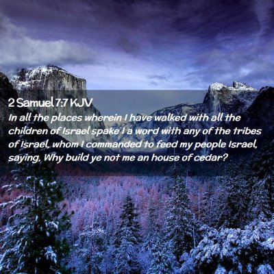 Picture 02 - 2 Samuel 7:7 KJV - In all the places wherein I have walked with all - Bible Verse Picture
