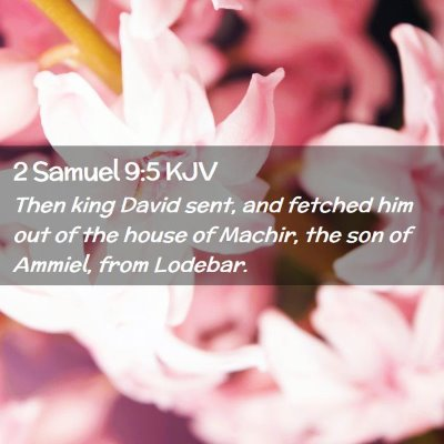 Picture 02 - 2 Samuel 9:5 KJV - Then king David sent, and fetched him out of the - Bible Verse Picture