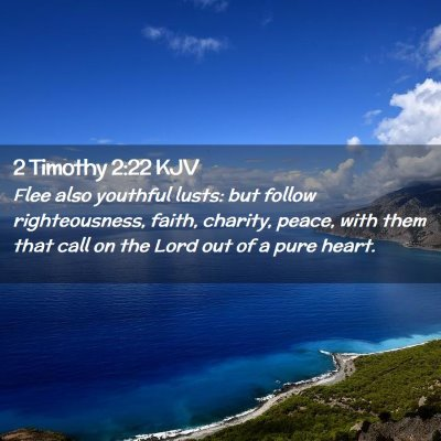 Picture 02 - 2 Timothy 2:22 KJV - Flee also youthful lusts: but follow - Bible Verse Picture