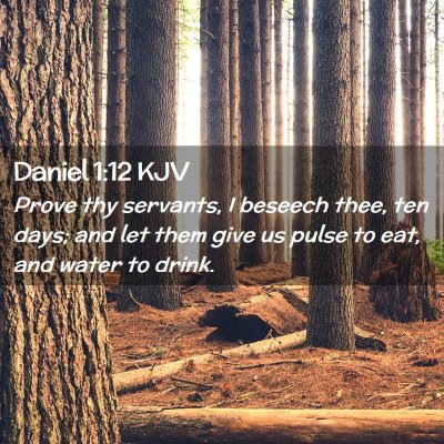 Picture 02 - Daniel 1:12 KJV - Prove thy servants, I beseech thee, ten days; and - Bible Verse Picture